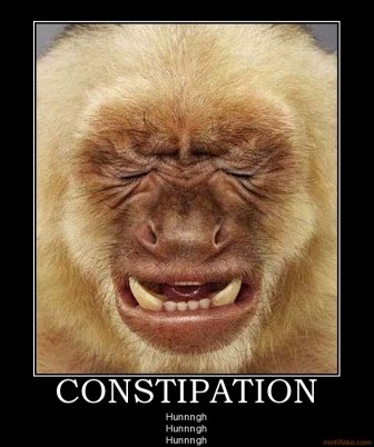 constipated monkey